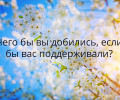 single branch of cherry tree with white flowers floral backgroun